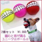 ペット 噛む 玩具 犬 ボール 2個 歯 �