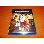 未使用BD 文豪ストレイドッグス 第1期 全12話BOXセット 開封品