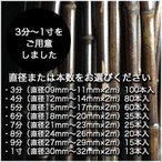 黒竹(2m/各種サイズ) 10,000円分セット