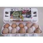 「烏骨鶏有精卵」 埼玉県秩父育ちの野外放し飼い烏骨鶏の卵・栄養補給と健康維持に!