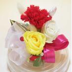 【AFP】魔法の枯れないお花 カーネーション プリザーブドフラワー ドーム型ケース入り アレンジメント mother2