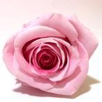 【AFP】プリザーブドフラワー 花材 グラデーション ローズ Lサイズ 約5-6cm 6輪入り 全3色  pfr8