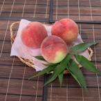 山梨県 桃 もも モモ 白桃 4Kg 甲州市産 特産品 送料無料 産地直送
