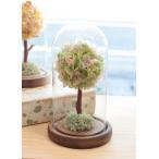 Yahoo!アグレアーブル花やプリザーブドフラワー  誕生日 御祝 お見舞い プレゼント 送別 出産祝い ブリザ あすつく 送料無料 セール