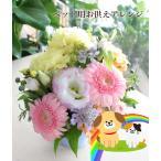 Yahoo!アグレアーブル花やペット用お供え 生花 アレンジメント お悔やみ 4色から選べる 虹の橋 セール クール便 「お花おまかせペットお供えアレンジ」
