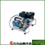 動力噴霧器 エンジン式 動力噴霧器 丸山製作所 エンジンセット動噴 MS315EA-1