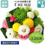 ペット専用選べるお供えの花 生花アレンジメント「コロコロ」&「ボヤージュ」