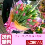 ショッピング春 春先取りチューリップの花束 30本