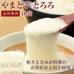 [お徳用] とろろ 山梨県産 やまと芋 冷凍 とろろ  (50g 40個入) 送料無料 大和芋/とろろ蕎麦/山かけ/おつまみ