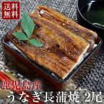 父の日 ギフト 海鮮 うなぎ 蒲焼 国産 鰻 長蒲焼き 2尾セット(135g x2) 鹿児島県産 送料無料 グルメ