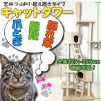 大型 猫顔BOX 突っ張りキャットタワー ネコタワー 225〜255cm オシャレ ジャングルジム ###キャットタワー020-B###