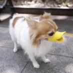 【犬 しつけ 無駄吠え防止】 クァック S OPPO quack 【しつけ用品 マズル 口輪 噛みぐせ  犬用品 ペット用