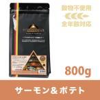 ピナクル サーモン&ポテト 800g ( ドッグフード ドライフード セール)