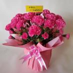 母の日、カーネーション鉢 (造花)ピンク( 高35cm巾25cm)、