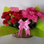 母の日、カーネーション鉢(造花)2個入セット 赤&ピンク(高さ25cm巾30cm)、