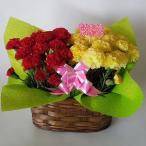 母の日、カーネーション鉢2個入セット(造花) 赤&イエロー (高さ25cm巾30cm)、
