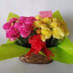 母の日、カーネーション鉢(造花)(2個入セット ピンク&イエロー (高さ25cm巾30cm)、