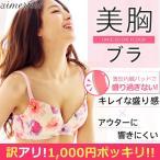 ブラジャー シームレス/ユニカラーフラワー美胸ブラ 単品ブラジャー (aimerfeel/エメフィール)