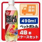 リアルゴールド フレーバーミックスフルーツパンチ 490ml ペットボトル 24本入り/2ケース 計48本 炭酸 リアルゴールド ご注文の数量は48本単位でご注文下さい!