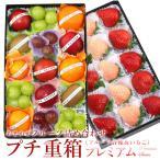 イチゴ 苺 フルーツ くだもの 果物 【プチ重箱プレミアム】 FPJ-5(プチフルーツ15個・いちご2〜3種・15個)