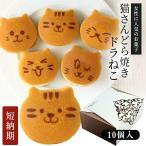 ねこのお菓子 どらネコ 10個入り 小豆餡 ギフト仕様 猫 動物 どら焼き ドラ焼き どらやき 和菓子 ギフト プレゼント