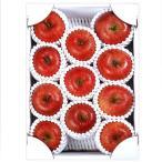 お歳暮 御歳暮 ギフト フルーツ 果物 ふじ りんご 山形県産 秀品 約3kg 9〜11玉 化粧箱入り