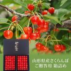 さくらんぼ 佐藤錦 または 紅秀峰 約600g 山形県産 秀品 化粧箱入り | 御中元 フルーツ 贈り物 贈答 くだもの