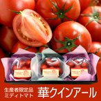 生産者限定 ミディトマト 華クインアール 約660g パック詰め 化粧箱入り 山形県最上町産 とまとやよずべぇ