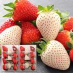 古都華 ことか & パールホワイト 紅白 2色の苺セット 奈良県産 約230g 2パック詰め 送料無料