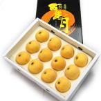 びわ 麗月 れいげつ 長崎県産 約700g 12玉〜15玉 化粧箱入り 送料無料
