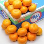 お歳暮 御歳暮 ギフト フルーツ 果物 味まる みかん 約5kg 長崎県産 蜜柑 詰め合わせ 御歳暮 贈答 贈り物