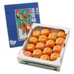 次郎柿 じろう柿 甘柿 愛知県産 約4kg 18〜20玉入り 詰め合わせ 箱入り 送料無料
