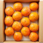 お歳暮 御歳暮 ギフト フルーツ 果物 延命柿 奈良県産 富有柿 約2.5kg L〜2Lサイズ 箱入り 送料無料 御歳暮 贈答 贈り物