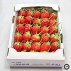 いちご フルーツ ギフト 女峰 にょほう ベリーベリー 約700g 香川県産 お祝い 内祝い 贈り物 プレゼント 苺 詰め合わせ 箱詰め ご贈答 品