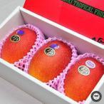 お中元 フルーツ 7月お届け 宮崎完熟 マンゴー 太陽のタマゴ 宮崎県産 2L寸 約350g×3玉 合計約1kg 化粧箱 送料無料 | 高級 くだもの 果物 ギフト ご贈答 御中元