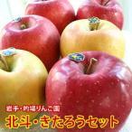 りんご 詰め合わせ 北斗 きたろう 食べ比べ セット 約2kg 5〜6玉入り 岩手県産 生産者限定 フルーツ ギフト くだもの 果物 林檎 ほくと