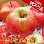 訳あり りんご 詰め合わせ サンふじ 約5kg 岩手県産 生産者限定 フルーツ ギフト くだもの 果物 林檎 わけあり 訳あり品