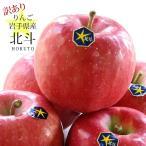 訳あり りんご 詰め合わせ 北斗 ほくと 約2kg 5〜6玉入り 岩手県産 生産者限定 フルーツ ギフト くだもの 果物 林檎 わけあり 訳あり品