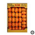 庄内柿 しょうないがき 種なし柿 山形県産 約5kg×1箱 27〜33玉入り