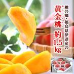 皇室献上郷の黄金桃 おうごんとう 約1.5kg 6玉前後 福島県伊達産 詰合せ 化粧箱入り 送料無料 ゴールデンピーチ もも