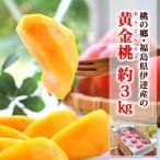残暑 見舞い フルーツ 黄金桃 約3kg 10玉前後 福島県伊達産 モモ 化粧箱入り 送料無料 | ギフト くだもの 黄金桃 おうごんとう 黄桃 もも 贈り物