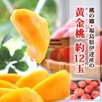 残暑 見舞い フルーツ 黄金桃 12玉前後 福島県伊達産 モモ 化粧箱入り 送料無料 | ギフト くだもの 黄金桃 おうごんとう 黄桃 もも 贈り物