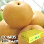 新興梨 しんこうなし 熊本県産 約5kg 10〜14玉入り 送料無料 芳野の日本梨