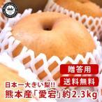 愛宕梨 あたごなし 熊本県産 約2.3kg 3〜5玉入り 化粧箱入り 送料無料 芳野の日本梨 日本一大きい梨