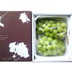 シャインマスカット ぶどう 葡萄 大粒 約500g以上 2房 秀 優品 ハウス栽培 山梨県産 化粧箱入り 送料無料
