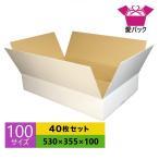 ダンボール箱 段ボール 100サイズ 白 40枚セット 日本製 無地 薄型 ホワイト 白ダンボール クロネコヤマト 宅急便 ゆうパック メルカリ 梱包