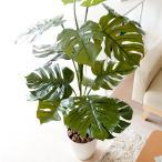 観葉植物 光触媒 人工植物 モンステラ 消臭 防菌 高さ120cm
