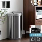 ゴミ箱 おしゃれ 47リットル 自動開閉 横開き キッチン ダストボックス ごみ箱 大容量 大型 リビング ステンレス ふた付き フタ付き 自動ゴミ箱 47L