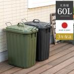ゴミ箱 屋外 大型 おしゃれ ダストボックス 大容量 60L ごみ箱 ふた付き 蓋付き ロック付き キッチン 外用 分別 角型 雨 日本製 ペールカン60