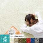 シャギーラグ - ラグ ラグマット 長方形 おしゃれ 洗える 3畳 北欧 シャギーラグ 200x250 オールシーズン ふかふか カーペット 絨毯 じゅうたん ダイニング リビングラグ